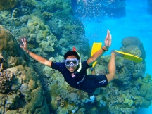 Finding Nemo at the Great Barrier Reef
