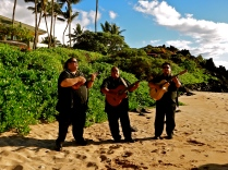 Because no Hawaiian wedding is complete without a ukulele