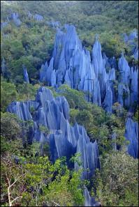 Gunung Mulu National Park | Source: Flickr @Manuel Beers